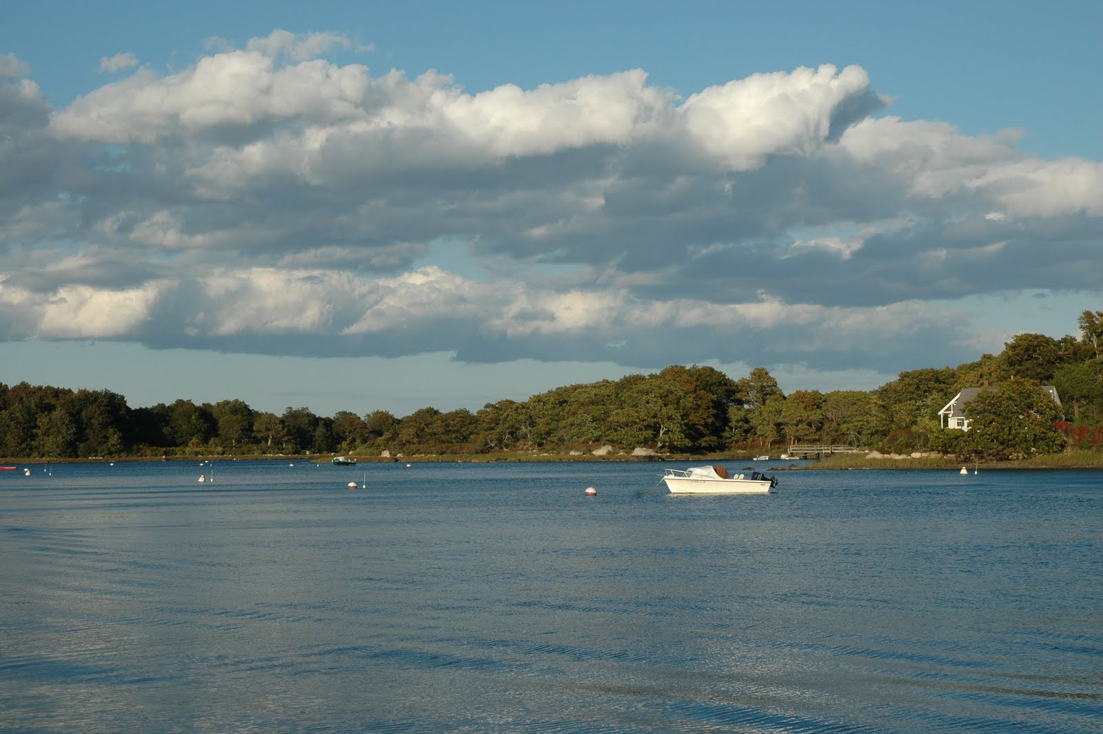 ... boats of all shapes and sizes following the striped bass and bluefish.