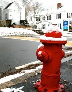 Hydrant waiting for a doggie guest from the Woods Hole Inn pet room:)