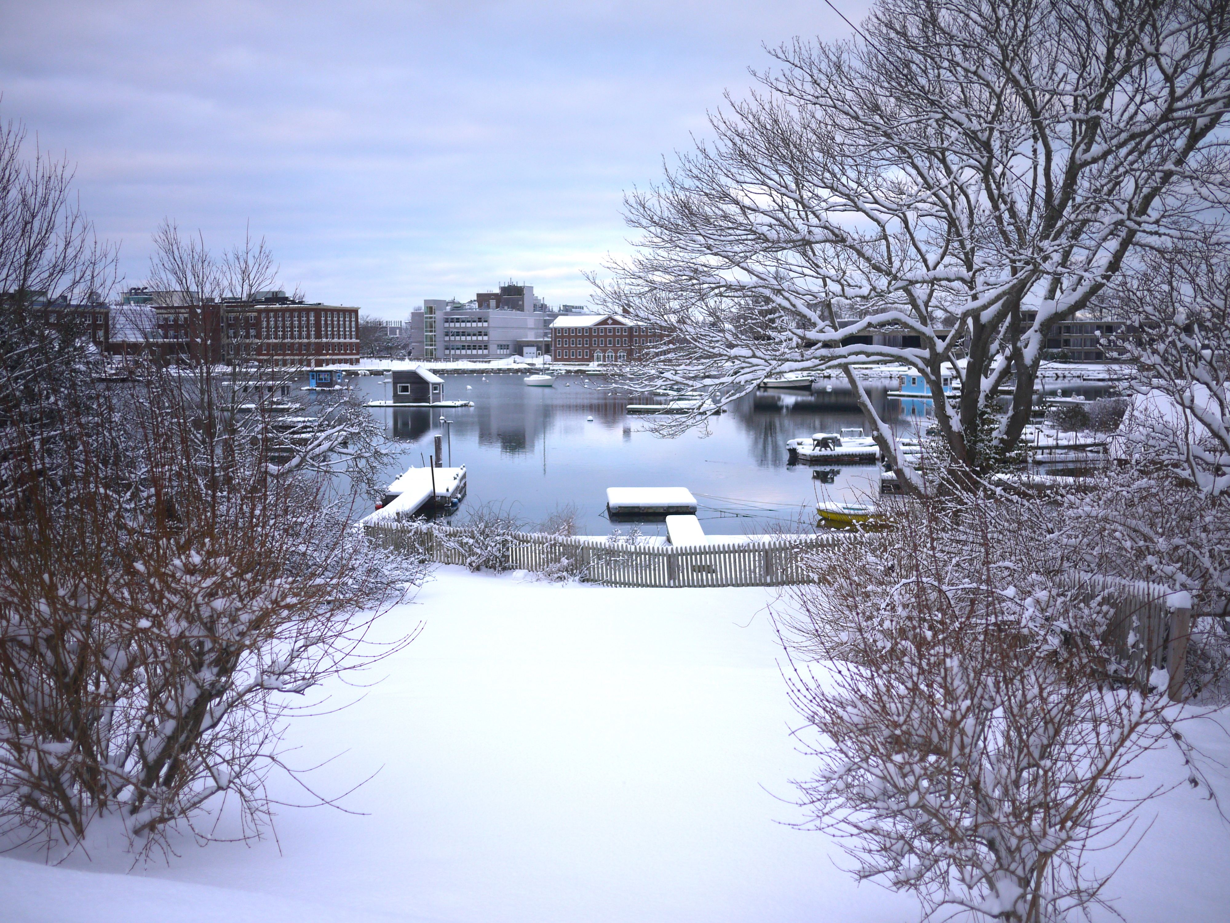 View of the Eel Pond, winter 2012