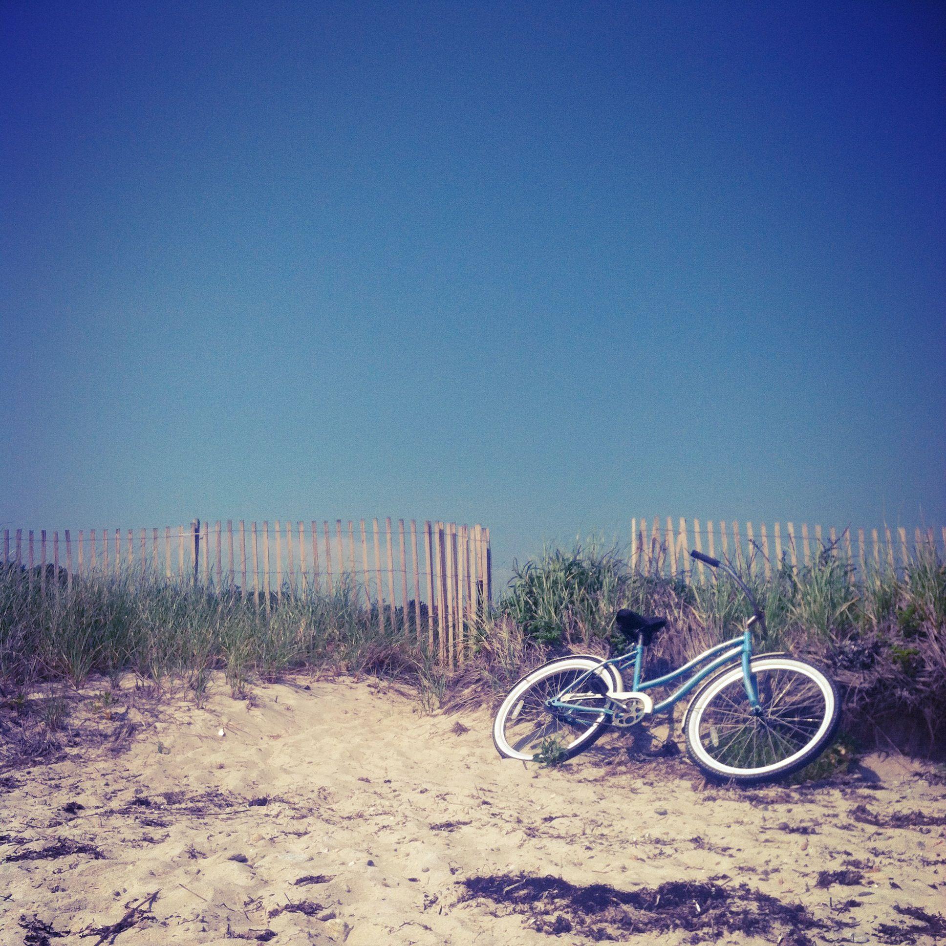 A Cape Cod Summer